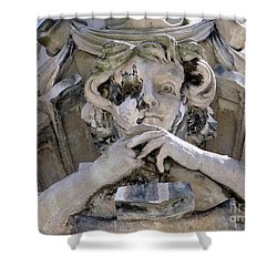 Weathered And Wise Shower Curtain by Ed Weidman