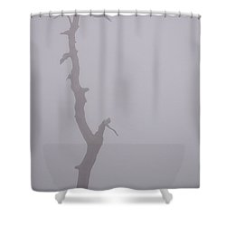 Shower Curtain featuring the photograph Weathered by Carlee Ojeda