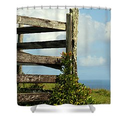 Weathered Fence Shower Curtain by Vivian Christopher