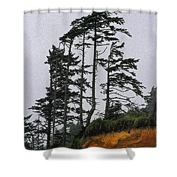 Weathered Fir Tree Above The Ocean Shower Curtain by Tom Janca