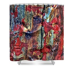 Weathered Shower Curtain by Marcia Colelli