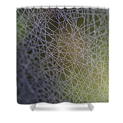 Web Connections Shower Curtain