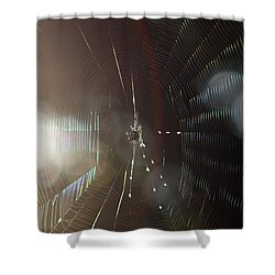 Web Of Flares Shower Curtain