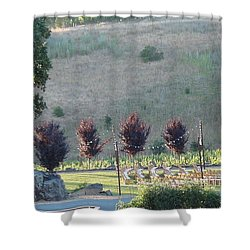 Wedding Grounds Shower Curtain by Shawn Marlow