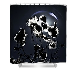 Weed Silhouette Shower Curtain by Mike Santis