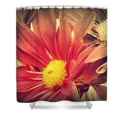 Weekend Day Shower Curtain