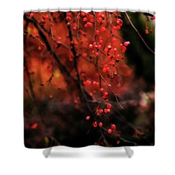 Shower Curtain featuring the photograph Weeping by Linda Shafer