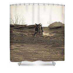 Weimaraner II - Lake Powell Shower Curtain by Julie Niemela