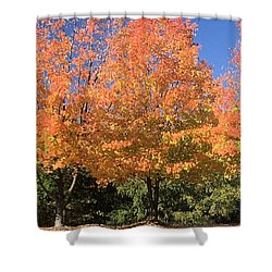 Shower Curtain featuring the photograph Welcome Autumn by Gordon Elwell