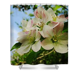 Welcome Blossoms Shower Curtain