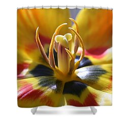 Welcome Shower Curtain by Doug Norkum