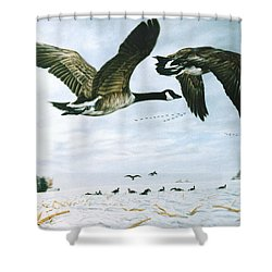 Welcome Home Shower Curtain by Craig T Burgwardt