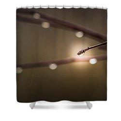 Welcome To Lothlorien Shower Curtain by Alexander Senin