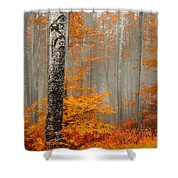 Welcome To Orange Forest Shower Curtain by Evgeni Dinev