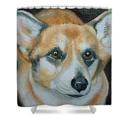 Shower Curtain featuring the painting Welsh Corgi by Thomas J Herring