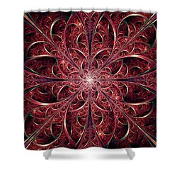 West Gates Shower Curtain by Anastasiya Malakhova