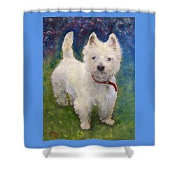 West Highland Terrier Holly Shower Curtain by Richard James Digance