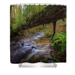 West Humbug Creek Shower Curtain