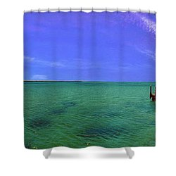 Shower Curtain featuring the photograph Western Australia Busselton Jetty by David Zanzinger
