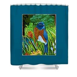 Western Bluebird Shower Curtain