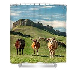 Western Longhorns Shower Curtain