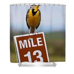 Western Meadowlark On The Mile 13 Sign Shower Curtain by Karon Melillo DeVega