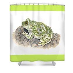 Western Spadefoot Shower Curtain by Cindy Hitchcock