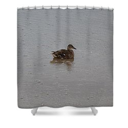 Wet Duck Shower Curtain