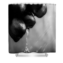 Wet Grapes Shower Curtain by Bob Orsillo