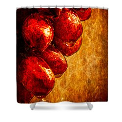 Wet Grapes Three Shower Curtain by Bob Orsillo