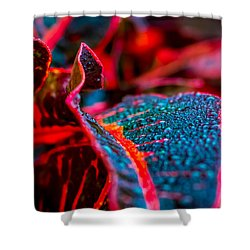 Wet Visions Shower Curtain