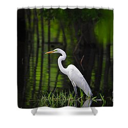 Wetland Wader Shower Curtain by Al Powell Photography USA