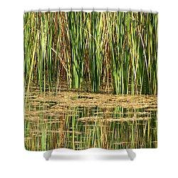 Wetlands Shower Curtain by Laurel Powell