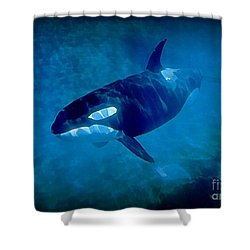 Whale Shower Curtain by John Malone