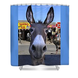 What . . . No Carrots Shower Curtain by Mike McGlothlen