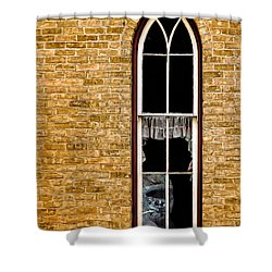 What 800 Lbs Gorilla Shower Curtain by Steve Harrington