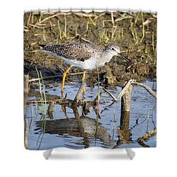 What A Meal Shower Curtain