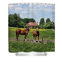 What Are You Staring At? Shower Curtain by Bedros Awak
