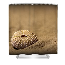 What Becomes Sand Shower Curtain
