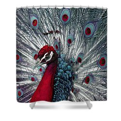 What If - A Fanciful Peacock Shower Curtain by Ann Horn