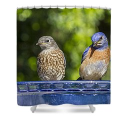 What Is It Shower Curtain by Jean Noren