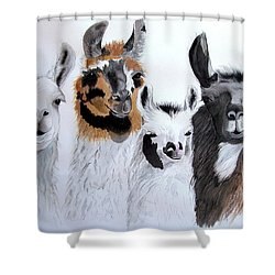What Is Up Shower Curtain