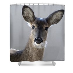 What Is Up With Mike? Shower Curtain by Bill Stephens