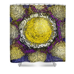 What Kind Of Sun II Shower Curtain