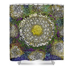 What Kind Of Sun IIi Shower Curtain