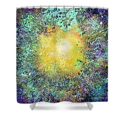 What Kind Of Sun Vii Shower Curtain