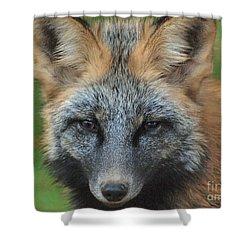 What The Fox Said Shower Curtain