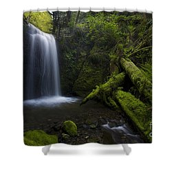 Whatcom Falls Serenity Shower Curtain