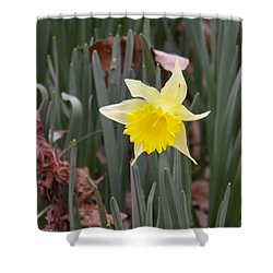 Shower Curtain featuring the photograph Whats Up Buttercup by Nick Kirby