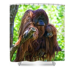 What's Up Shower Curtain by Heiko Koehrer-Wagner